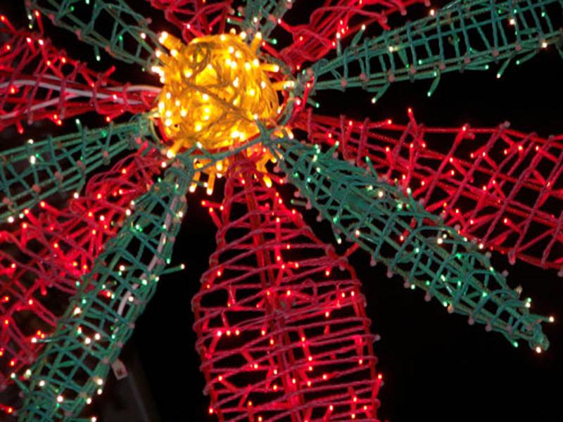 El Ayuntamiento de El Coronil vuelve a cambiar las luces de navidad por empleo para los jóvenes