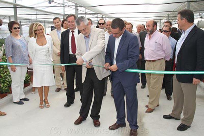 El Coronil crea 60 nuevos empleos y multiplica su producción de setas con la ampliación de los invernaderos energéticos